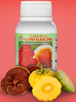garcina supplement